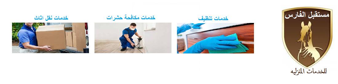 شركة مستقبل الفارس