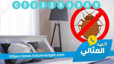 Photo of شركة مكافحة حشرات بالقطيف 0503298969 (شركة الغيد المثالي ) الراحة التامة