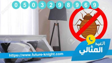 Photo of شركة مكافحة حشرات بالدمام الشركة المتخصصة في القضاء علي الحشرات